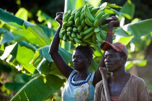 bananentraegerin